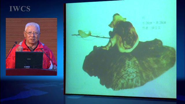 浪木艺术的选材、构思与造型