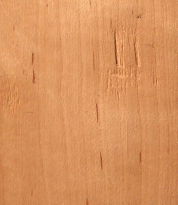木材新切面上有难闻气味;心材色黄……………………………香榧torrey