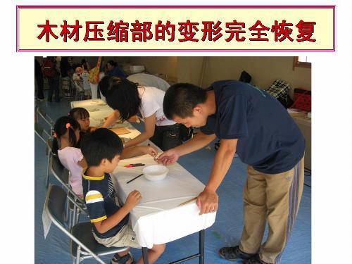 日本木材教育新动向
