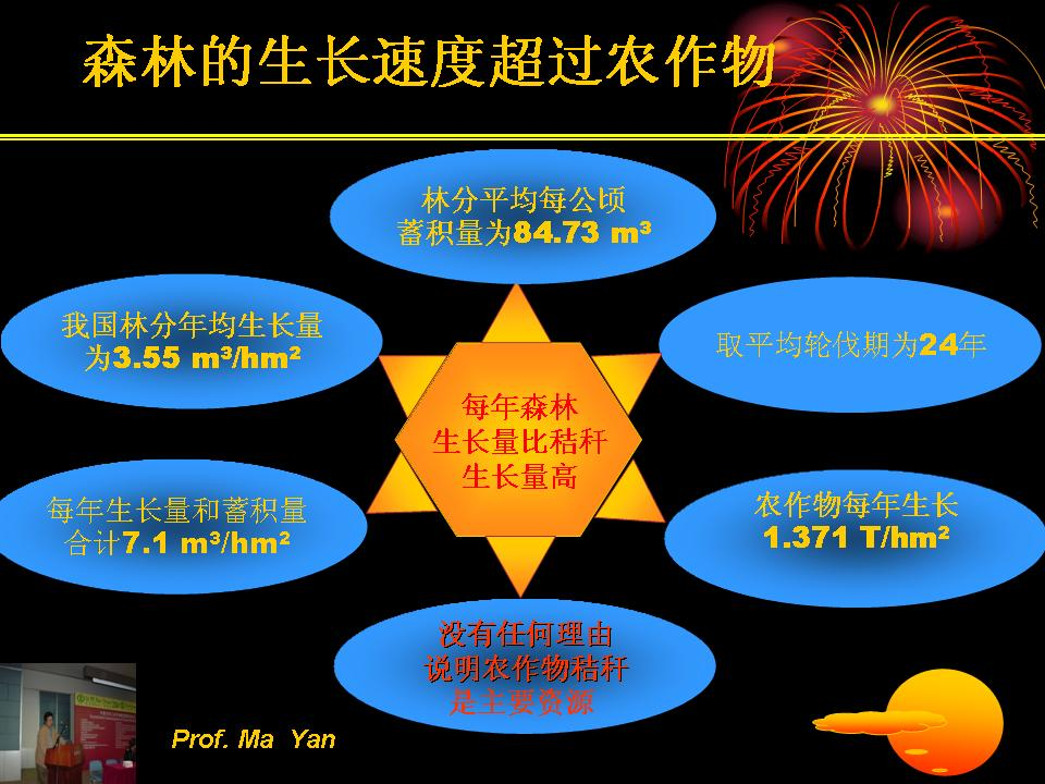 我国生物质能源资源量估算——第二届中国林业学术