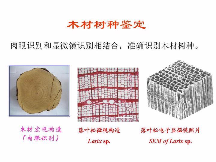 中国古建筑木结构保护技术现状与展望 - 木工工具