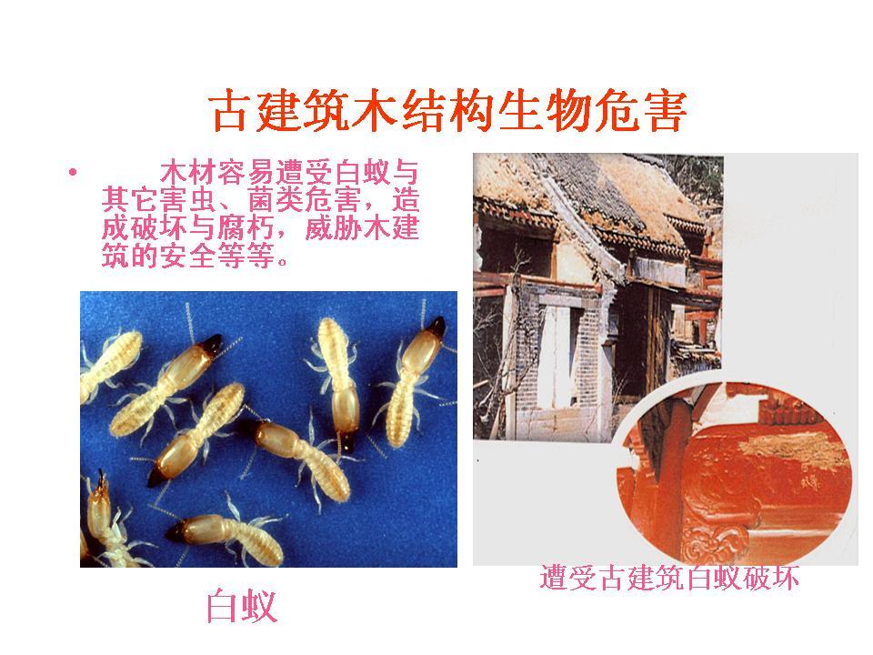 中国古建筑木结构保护技术现状与展望