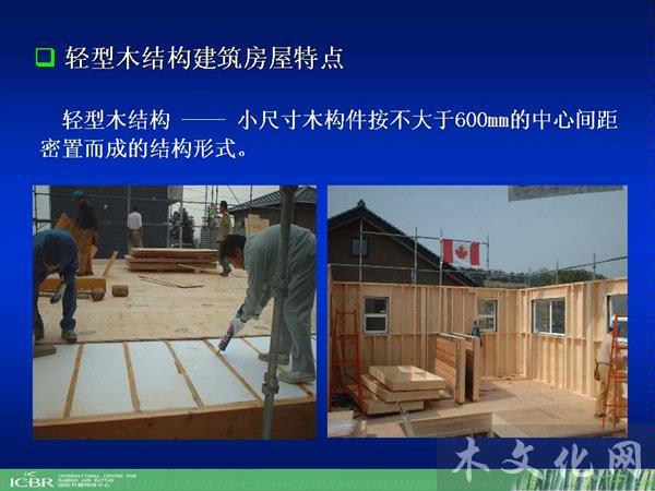 国产轻型木结构用落叶松胶合板覆板生产技术与性能评价