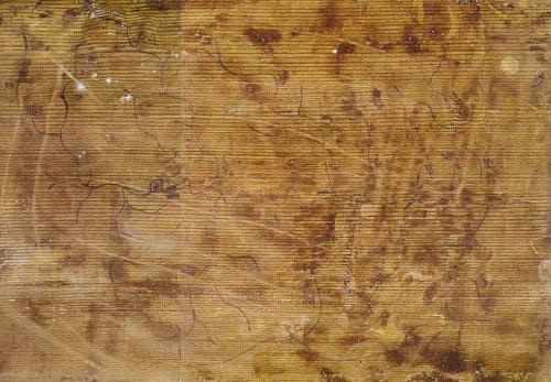 最早的木板地图——天水放马滩地图